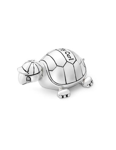 Wat een coole pet heeft deze schildpad