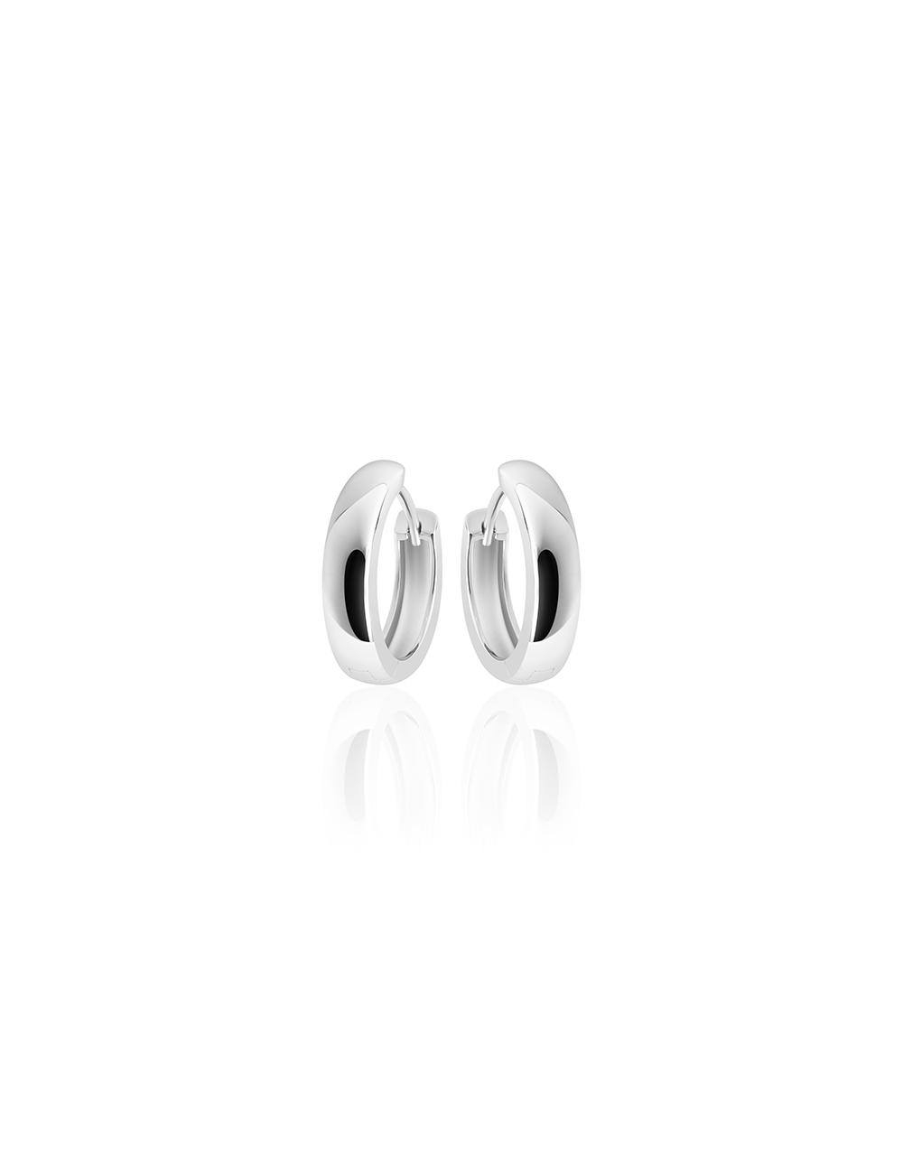 Zilveren Creolen