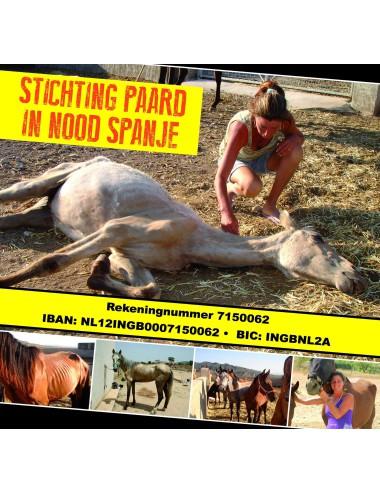 Stichting Paard in Nood Spanje Los Caballos Luna